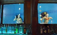 B Ocean Wreck Bar