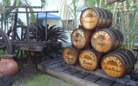 Puerto Plata, Dominican Republic - Brugal Rum