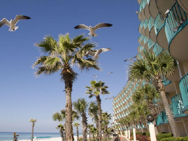 Inn Paradise Panama City Beach Fl
