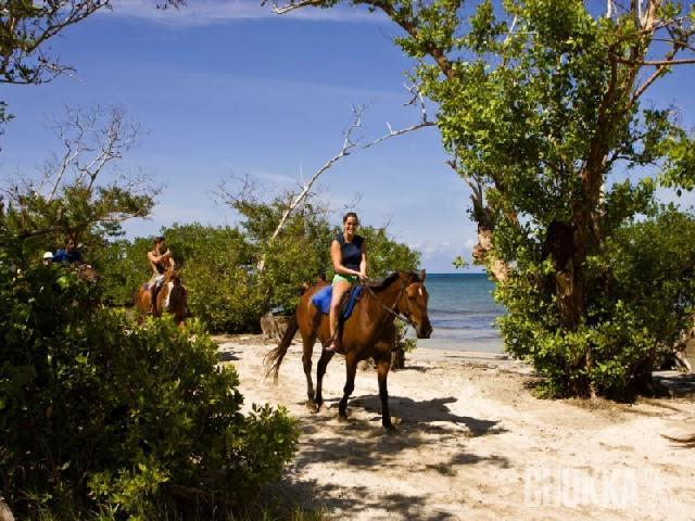 Horseback Ride N Swim - Ocho Rios, Jamaica