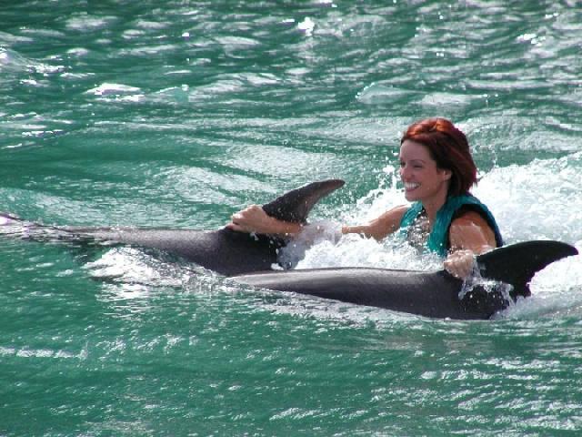 Dolphin Cove - Ocho Rios, Jamaica