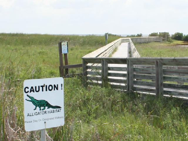 Laguna Madre Nature Trail - South Padre, USA
